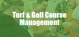 Turf & Golf Course Management