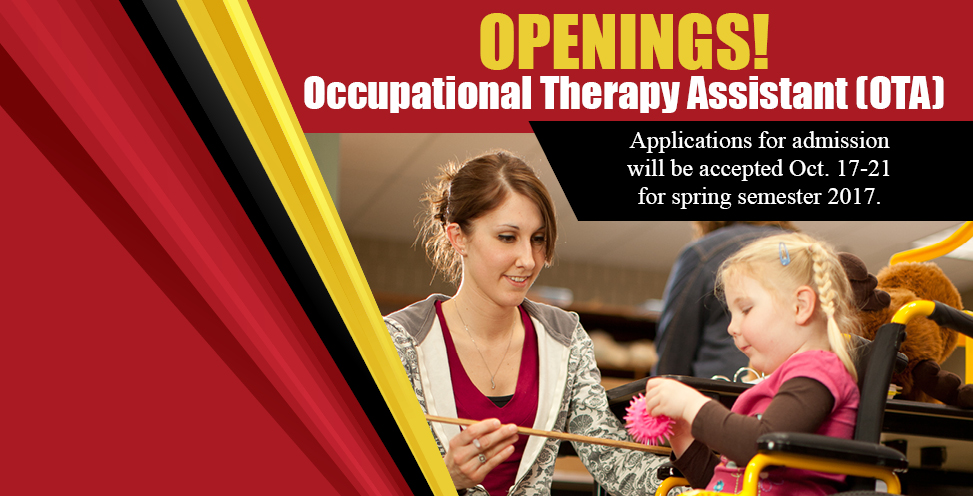 Occupational Therapy Assistant (OTA)